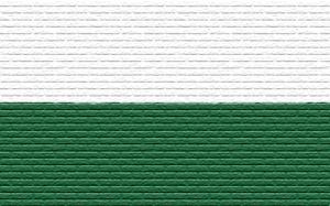 bg_FSV